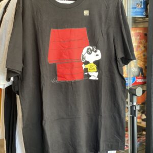 KAWS x Uniqlo x Peanuts Joe Kaws Doghouse Size XL