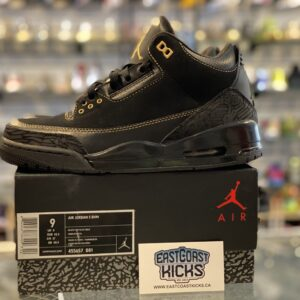Preowned Jordan 3 Black History Month Size 9