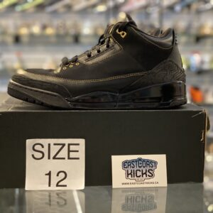 Preowned Jordan 3 Black History Month Size 12